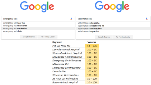 Veterinary SEO