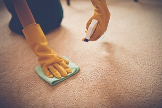 Carpet Cleaning Company Milwaukee