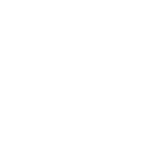 Custom website designers for All American Association of Home Inspectors