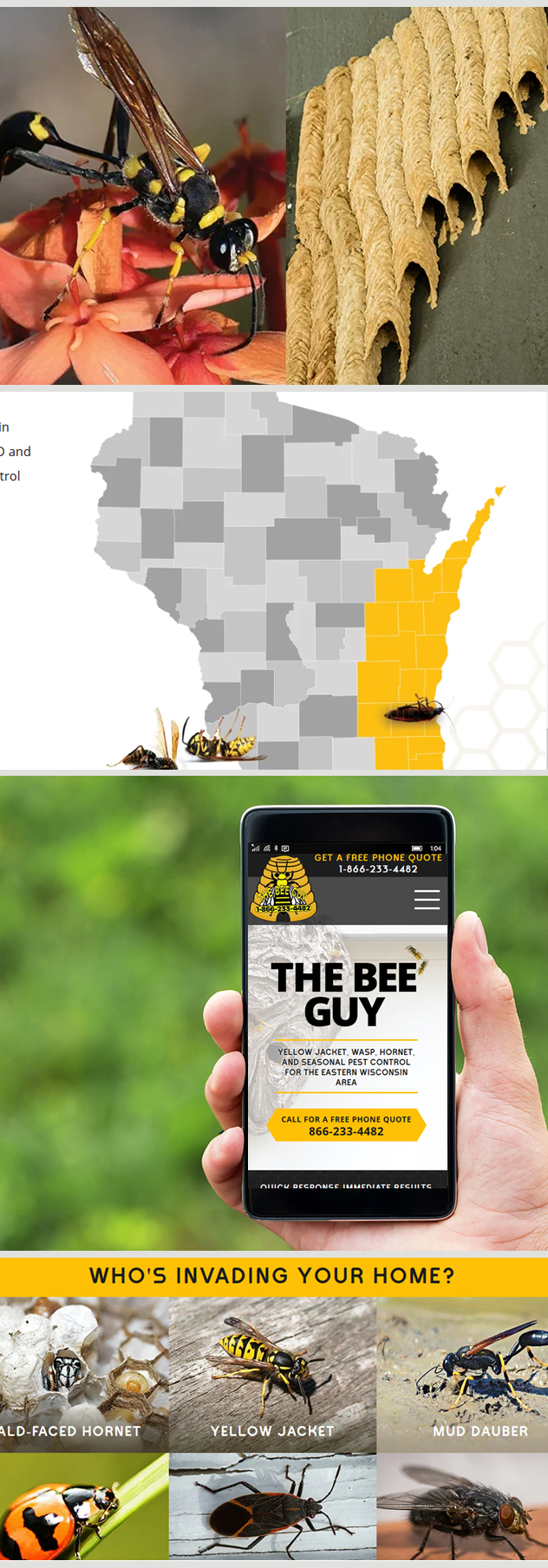 Milwaukee web marketing for The Bee Guy