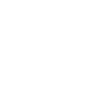 Professional website design and devlopment for hunting dog supplies online store