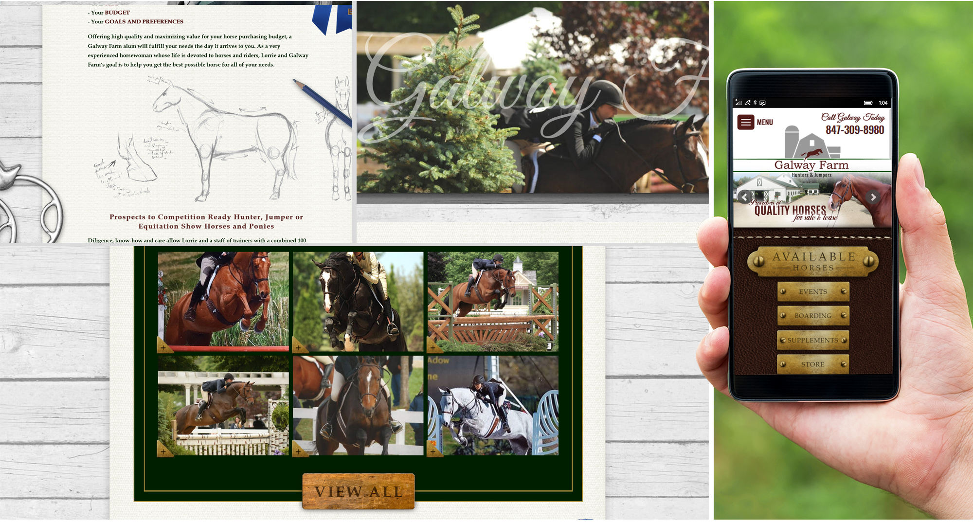 Milwaukee Web Marketing for Horses