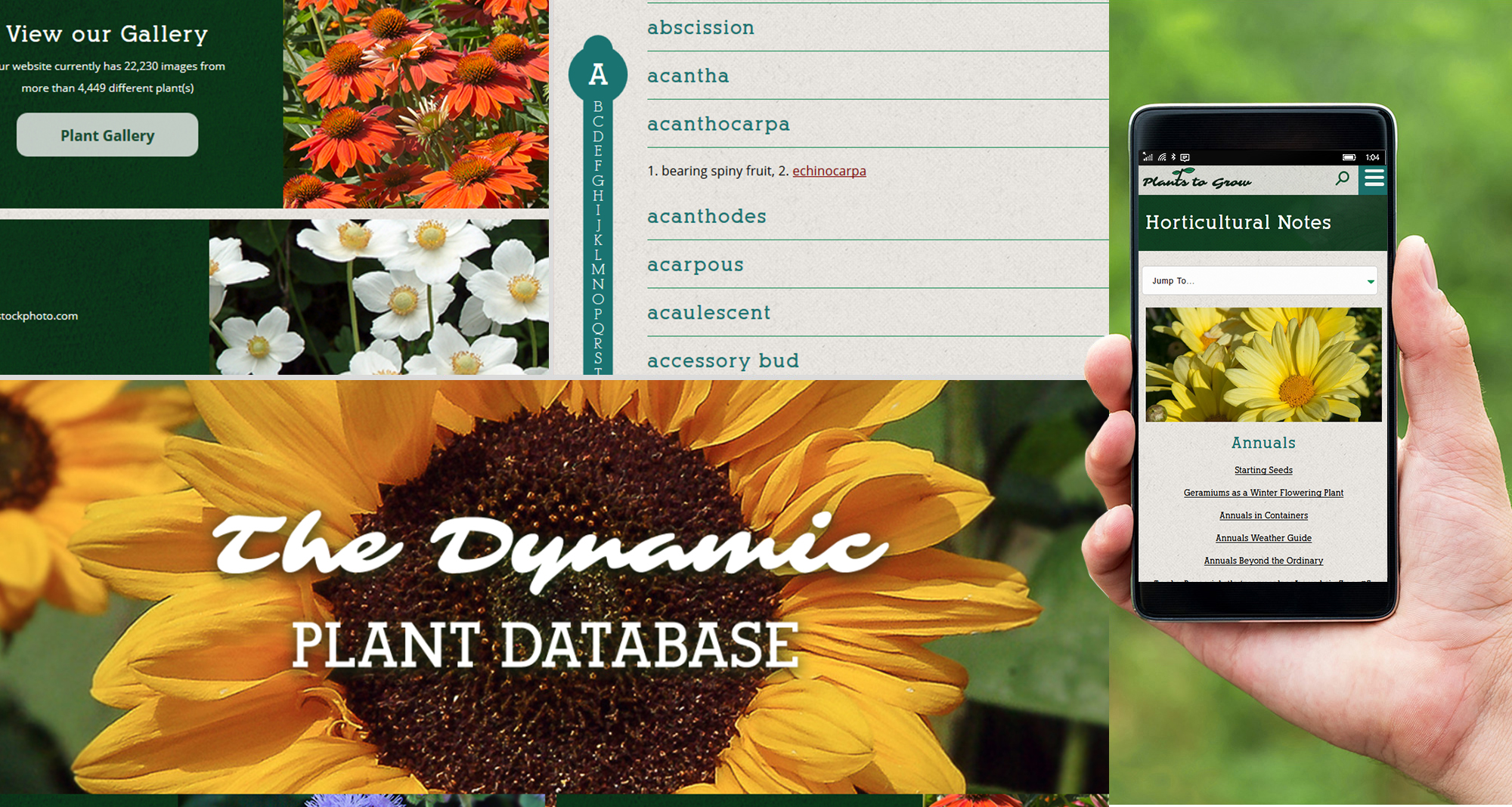 Milwaukee web marketing for Plants to Grow